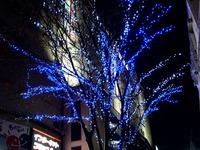 20111111_市川市市川1_JR市川駅北口_クリスマス_1939_DSC00110