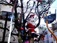 20111211_習志野市谷津4_谷津遊路商店街_クリスマス_1247_DSC04850