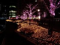 20111219_東京大崎_クリスマス_イルミネーション_1925_DSC05758