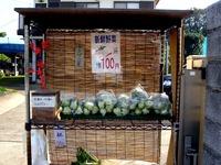 20111113_鎌ケ谷市中沢_農家_農産物直売所_1038_DSC01155