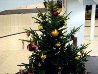 20111204_ららぽーとTOKYO-BAY_クリスマスツリー_1020_DSC03617