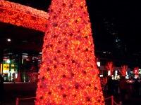 20111124_東京都千代田区有楽町_クリスマス飾り_2007_DSC02455