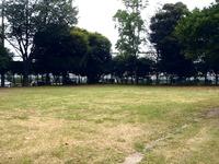 20110718_習志野市谷津4_西之華公園_放射線量_1229_DSC09524