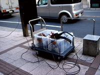 20111126_船橋本町通り商店街_クリスマス飾り_1006_DSC02510