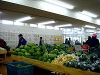 20111123_船橋市行田3_農産物直売所_ふなっこ畑_0931_DSC02230