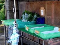 20111113_鎌ケ谷市中沢_農家_農産物直売所_1036_DSC01152T