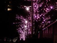 20111219_東京大崎_クリスマス_イルミネーション_1916_DSC05745