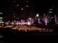 20111219_東京大崎_クリスマス_イルミネーション_1925_DSC05763