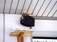20110715_千葉市稲毛区稲毛3_京成稲毛駅_ツバメの巣_1411_DSC09816