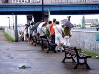 20110917_船橋親水公園_ハワイアンフェスティバル_0926_DSC03480