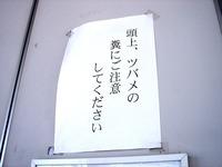 20110715_千葉市稲毛区稲毛3_京成稲毛駅_ツバメの巣_1416_DSC09828