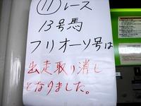 20110923_船橋競馬場_フリオーソ号_出走取消し_1538_DSC04845