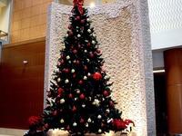 20111211_習志野市_東京湾岸リハビリテーション病院_1242_DSC04836