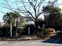 20111224_習志野市_秋津タイムカプセル掘り起こし会_1023_DSC06354