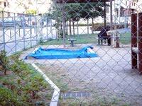 20110716_船橋市本町4_本町4丁目公園_放射線量_1655_DSC00159