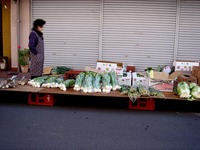 20111225_船橋市浜町1_浜町商店街_餅つき大会_1123_DSC06663