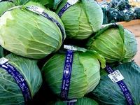 20111123_船橋市行田3_農産物直売所_ふなっこ畑_0930_DSC02228