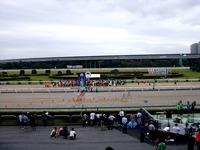 20111001_船橋市若松1_船橋競馬場ふれあい広場_1123_DSC05800