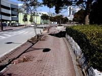 20110313_東日本大震災_幕張新都心_歩道_隆起_破壊_1300_DSC00043