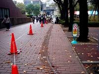 20111103_習志野市泉町1_日本大学生産工学部_桜泉祭_1339_DSC09384