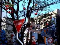 20111211_習志野市谷津4_谷津遊路商店街_クリスマス_0957_DSC04526