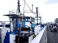 20110917_船橋親水公園_ハワイアンフェスティバル_0943_DSC03522