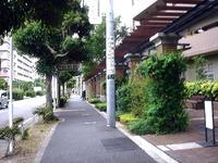 20110625_船橋市行田_UR田団地_放射線量_0959_DSC04183