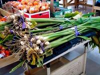 20111123_船橋市行田3_農産物直売所_ふなっこ畑_0930_DSC02227