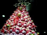 20111220_東京都有楽町_東京国際フォーラム_クリスマス_2034_DSC05832
