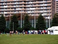 20111113_法典公園_グラスポ_治水&法典地域祭_0952_DSC01066