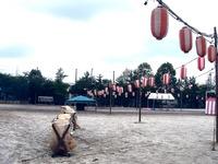 20110730_船橋市立芝山中学校_芝山団地祭り_盆踊り_1204_DSC09688