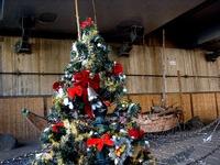20111126_船橋市浜町1_べか舟_クリスマス飾り_1049_DSC02684