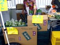 20110917_船橋親水公園_ハワイアンフェスティバル_0946_DSC03536