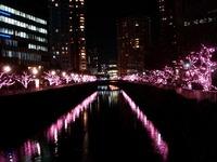 20111219_東京大崎_クリスマス_イルミネーション_1913_DSC05734