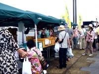 20110917_船橋親水公園_ハワイアンフェスティバル_0946_DSC03538