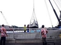 20110917_船橋親水公園_ハワイアンフェスティバル_0937_DSC03504