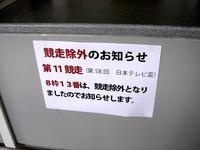 20110923_船橋競馬場_フリオーソ号_出走取消し_1538_DSC04843