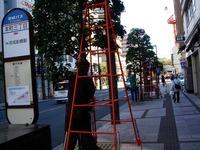 20111126_船橋本町通り商店街_クリスマス飾り_1042_DSC02669