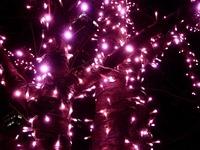 20111219_東京大崎_クリスマス_イルミネーション_1915_DSC05744