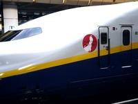 20110813_JR東北新幹線_東京駅ホーム_放射線量_1649_DSC00558