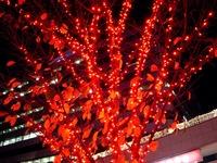 20111124_東京都千代田区有楽町_クリスマス飾り_2008_DSC02465