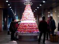 20111220_東京都有楽町_東京国際フォーラム_クリスマス_2033_DSC05829T