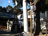 20111231_市川市中山4_安房神社_初詣準備_1301_DSC08033