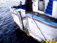 20110917_船橋親水公園_ハワイアンフェスティバル_0942_DSC03519