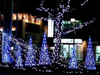 20111222_船橋市_西船橋駅北口_クリスマスツリー_3_1709_DSC00709T