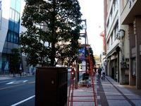 20111126_船橋本町通り商店街_クリスマス飾り_1042_DSC02668
