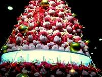 20111220_東京都有楽町_東京国際フォーラム_クリスマス_2034_DSC05833