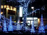 20121115_西船橋駅北口ロータリー_クリスマスツリー_1954_DSC01506T
