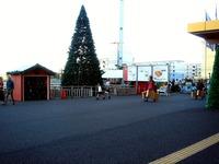 20121118_イケア船橋_モミの木クリスマスツリー_1502_DSC02273