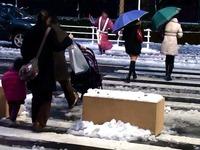 20130114_船橋市_関東地方_低気圧_成人の日_大雪_1651_0810